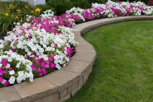 Redesigning Your Flower Beds